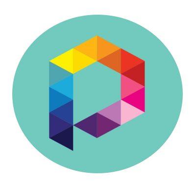 PIXEL SOLUTIONS NETWORK (EXCELIUM INFORMATIQUE)