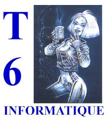 SAS CYBERZ- T6 INFORMATIQUE