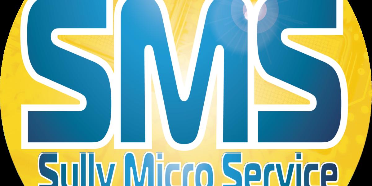 SULLY MICRO SERVICE